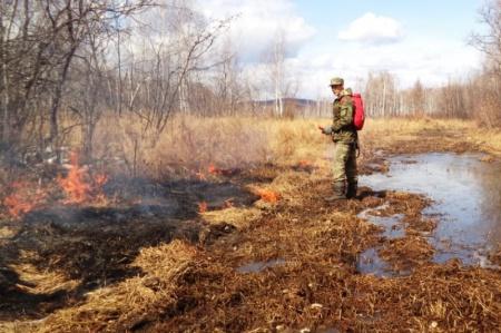В лесничествах Хабаровского края продолжаются отжиги сухой травы