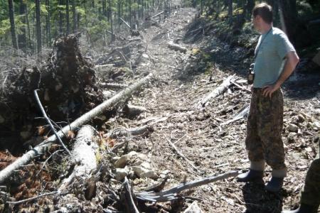 В Хабаровском крае лесными инспекторами выявлены нарушения лесного законодательства