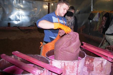 В Хабаровском крае на стратификацию будет заложено 13 тонн семян кедра корейского