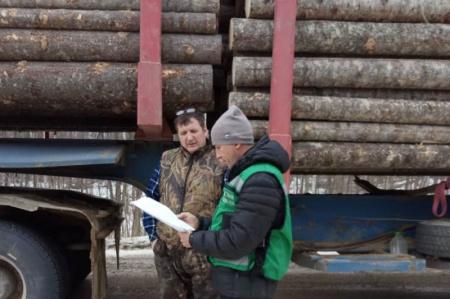 В Хабаровском края выявлено 96 нарушений правил пожарной безопасности в лесах