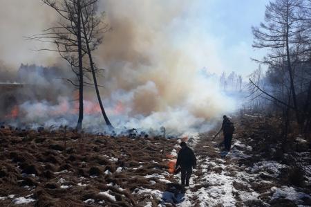 В Хабаровском крае лесные огнеборцы отбили поселок от огня