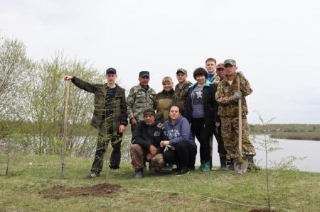250 деревьев посажено на берегу реки Амгунь и в местах отдыха полиноосипенцев
