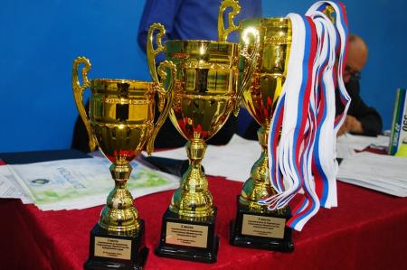 В Хабаровске сборная команда управления лесами завоевала бронзу в соревнованиях по бадминтону
