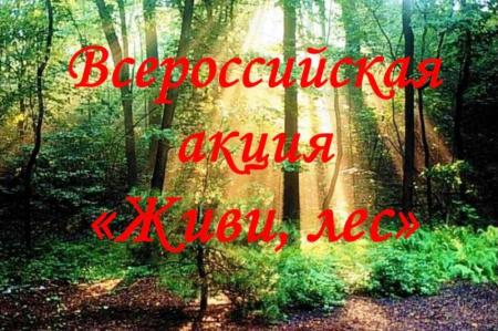 В Хабаровском крае проходит акция «Живи, лес!»