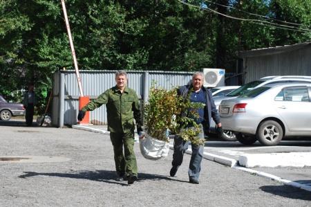 """В Хабаровском крае стартовала акция """"Живи, лес!"""""""