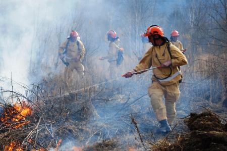 В Хабаровском крае все лесные пожары потушены