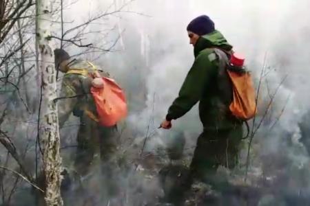 Оперативно о лесных пожарах