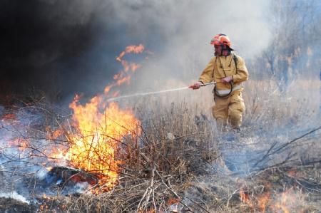 На территории Хабаровского края зарегистрировано два лесных пожара