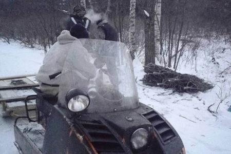 В Оборском и Хабаровском лесничествах лесные инспекторы выявили незаконные рубки пихт и елей