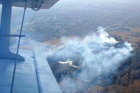 ВХабаровском крае пожар охватил неменее 2,5 тысячи гаБолоньского заповедника