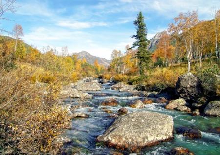 В РФ отмечают День заповедников инациональных парков