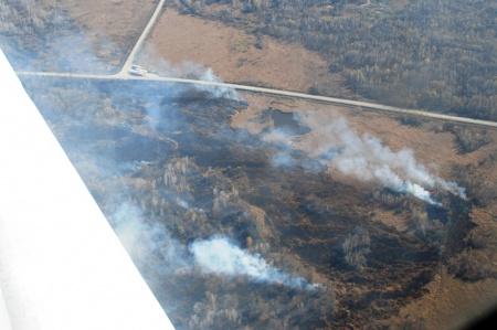 С 3 апреля в лесах Хабаровского края открыт пожароопасный сезон
