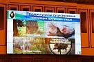 В Хабаровске состоялось совещание по проблемам сохранения популяции амурского тигра