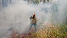 Авиалесоохрана отмечает вспышку грозовых лесных пожаров на Урале и в Сибири