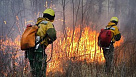 На тушение лесных пожаров в Амурской области направлены 35 парашютистов-десантников