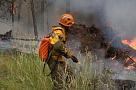 Лесные пожарные должны стать национальными героями